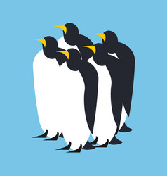 penguin flock animal north pole bird antarctica vector image
