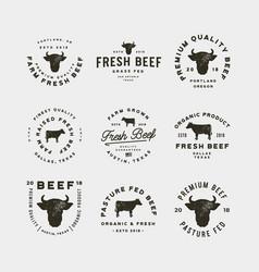 Set of premium fresh beef labels vector