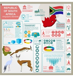 South africa infographics statistical data sights vector
