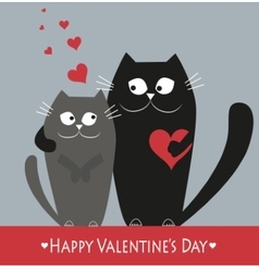 Valentains Day Decoration with two cats vector image