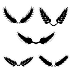 Wheat set in black vector image