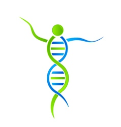DNA person Logo vector image vector image