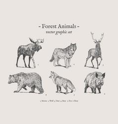 forest animals vintage set vector image