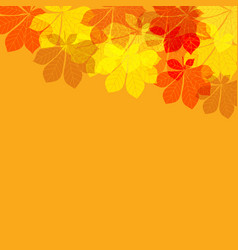 abstract autumn leaves on orange background vector image