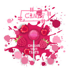 Candy raspberry lolly dessert colorful icon choose vector
