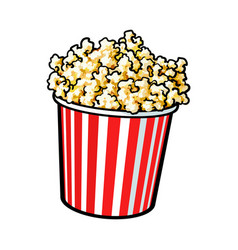 cinema popcorn in a big red and white striped vector image
