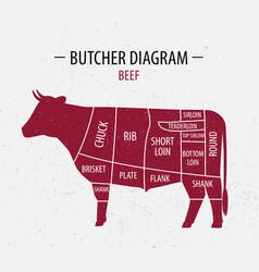 cut beef poster butcher diagram vector image