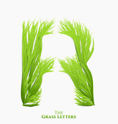 Letter r of juicy grass alphabet green r vector