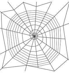 Spider web spiral orb web type Halloween vector