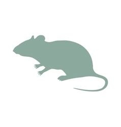Wild rat mouse animal flat silhouette vector image