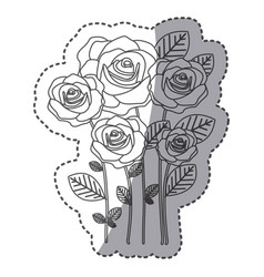 silhouette many roses with oval petals icon vector image
