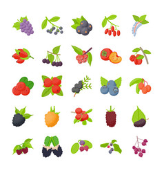 Berry fruits flat icons vector