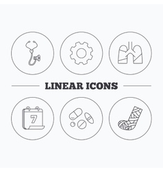 Broken foot lungs and medical pills icons vector image