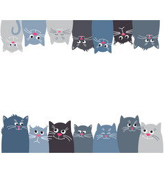 cats look up and down horizontal banner with many vector image