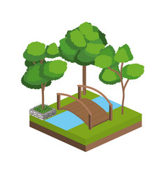 isometric trees and river design vector image