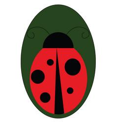 ladybug on a leaf or color vector image