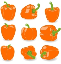 Pepper set of orange peppers vector