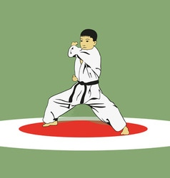 The boy showing karate vector image