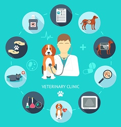 Veterinary flat icon set Veterinary banner vector image