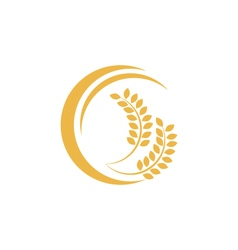 Wheat logo template vector