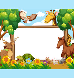 Whiteboard with animals in forest vector