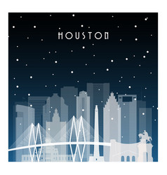 winter night in houston night city in flat style vector image