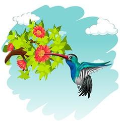 Hummingbird flying around the flowers vector image