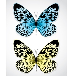 blue and yellow butterflies vector image
