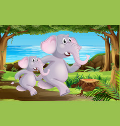 elephants in nature scene vector image