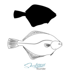 Flounder fish silhouette linear silhouette sea vector