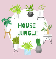 home jungle plants in scandinavian vector image