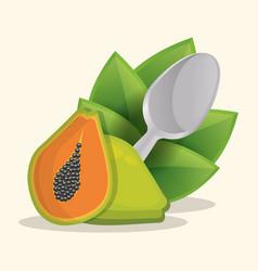 papaya healthy food menu vector image