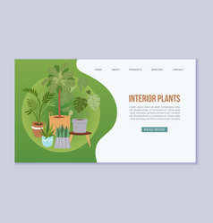interior plants in scandinavian vector image