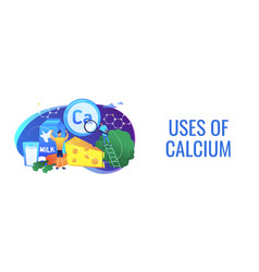 Uses of calcium concept banner header vector