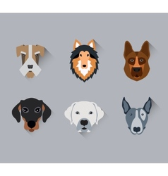 Dog face Portrait flat icon set vector image