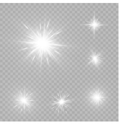 light flare special vector image