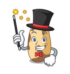 Magician brazil nut mascot cartoon vector