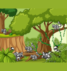 Scene with lemurs in forest vector