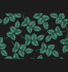 seamless pattern with green leaves on black vector image