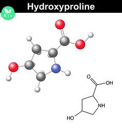 Hydroxyproline heterocyclic amino acid vector image vector image