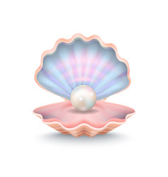 Closeup of pearl and shell vector