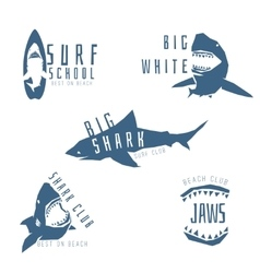 Shark logo concept for surf or beach club vector