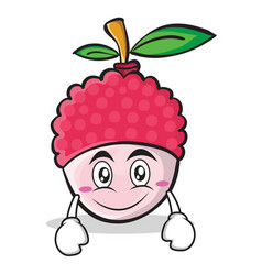 Smile face lychee cartoon character style vector