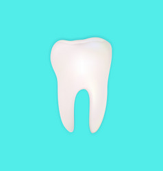 teeth on pastle background vector image