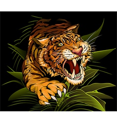 The Hunting Tiger vector
