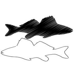 zander silhouette vector image