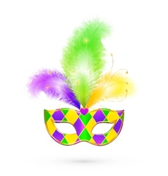 Mardi Gras traditional colors mask vector image