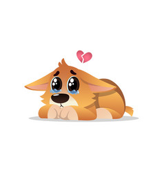 Abandoned little corgi with tears on eyes lonely vector