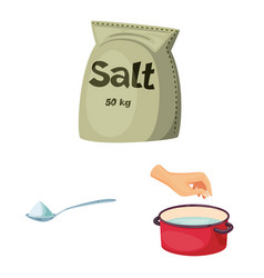 Design salt and food icon set salt vector