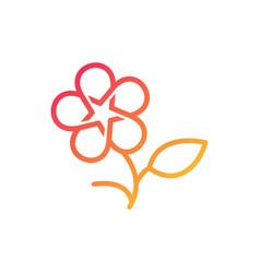 flower star colorful stars logo icon line outline vector image